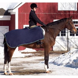 exercise_rug