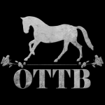 ottbcollectionlogo