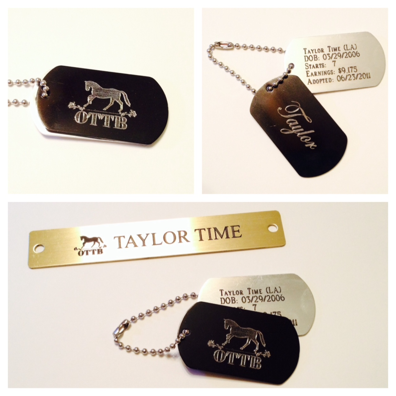 Review: OTTB Collection Tags and Halter Plate from Saucy ...