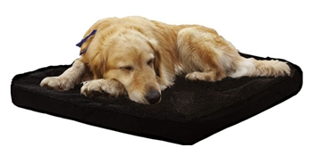 DraperTherapies_DogBed-4T