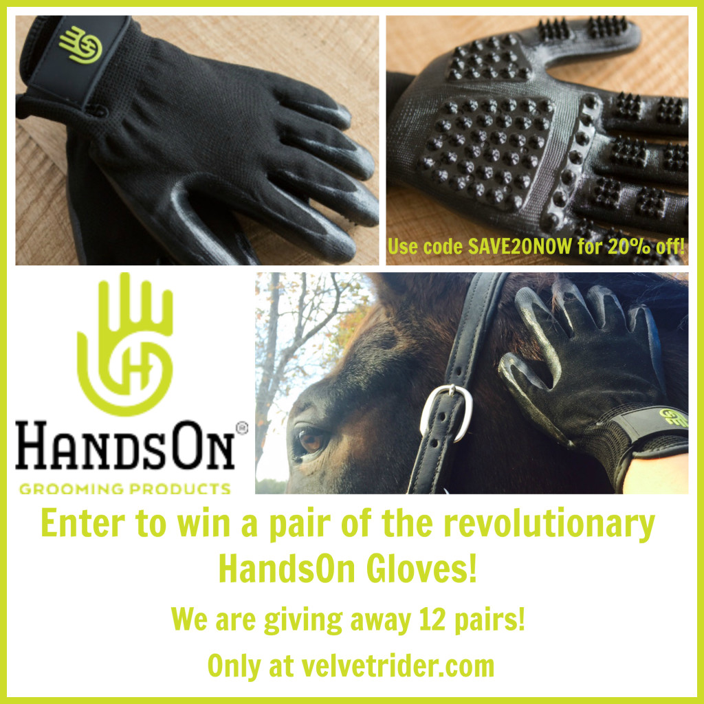 handsongloves_12days